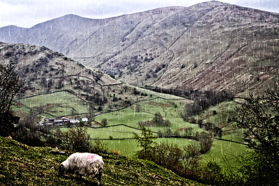 a-england's lake district 3rd Larry Headley