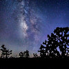 o-joshua tree milky way-2nd Don Loseke