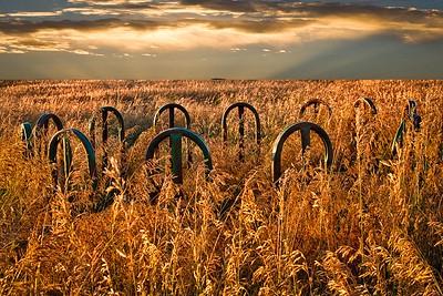 o-sandhills yard art 2nd Larry Headley.jpg