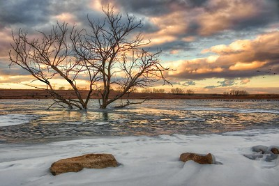 n-sunset at walnut lake 1st Nikki McDonald.jpg