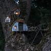 C - Tree house