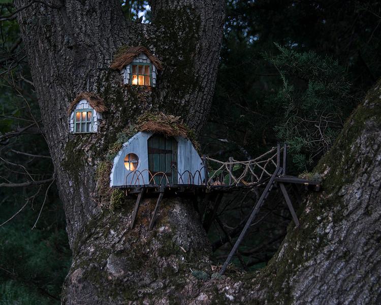 C - Tree House 3rd Stephen Barker