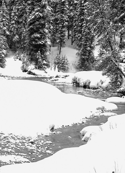 T - Yellowstone Winter Wonderland