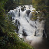 N(3) Mike Barker Sparrow Falls Wales