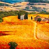 Dreaming of Tuscany - Honorable Mention