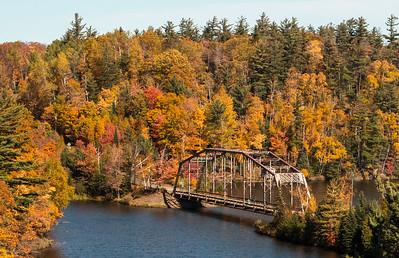 Fall in MichiganbyDonna Turner