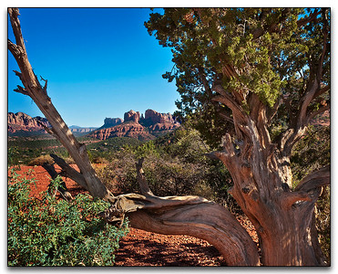 Red Rocks Sedona AZ	by	Don Loseke