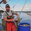 J (2) - Fishy Business