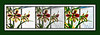 Three Takes on Amaryllis Blooms