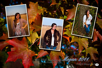 Megan3shotbackground
