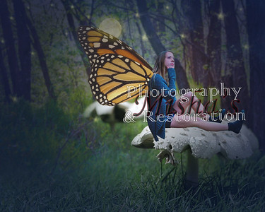 Composites and Digital ART