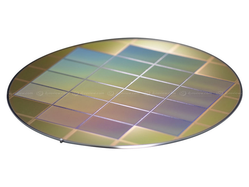 24x36mm sensors on wafer