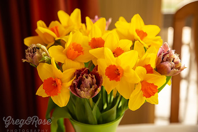 Daffodils and Tulips such a lovely treat