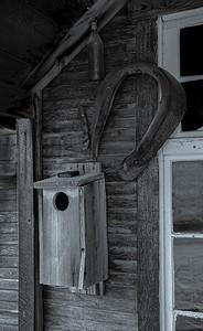 Bird box and Horse Colar B&W