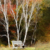 Park bench <br /> <br /> Rendered in Painter IX and Photoshop CS 5
