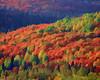 Oberg Mountain, Lutsen, MN