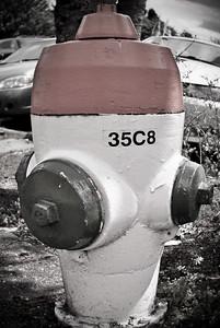 DSC_0091-Edit-amberbrown