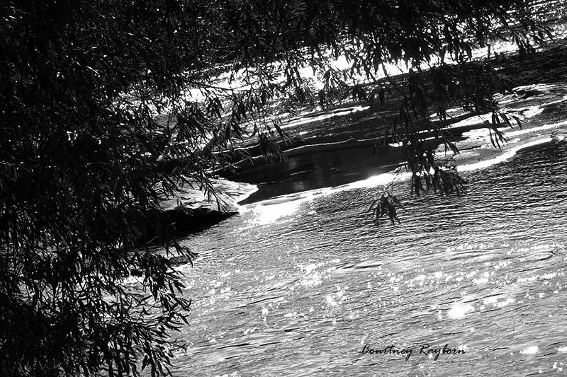 CRAYBORN_FRAMING with nature