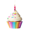 BirthdayCupcake