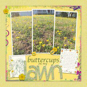 buttercups on my lawn