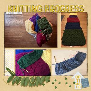 Knitting Progress