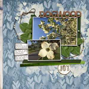 04fdd_Fiddlesticks64-dogwood