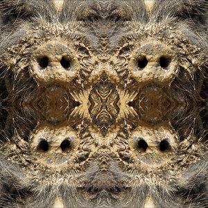 P patterns