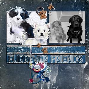 furreverfriends