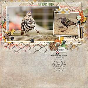 featheredfriend