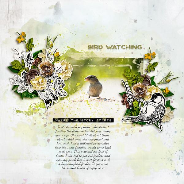 birdwatching-L.jpg