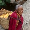 Gathering Apricots<br /> Thardot Choeling Nunnery<br /> Ladakh, India