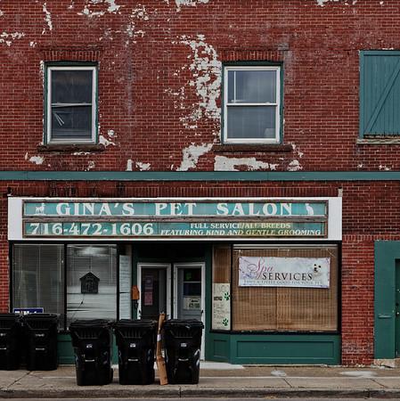 Gina's Pet Salon