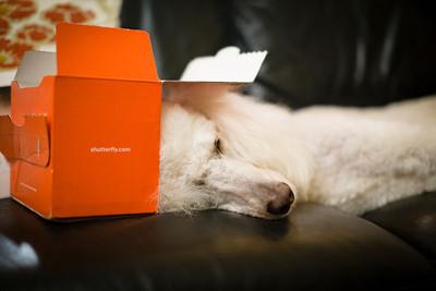 A new way to sleep