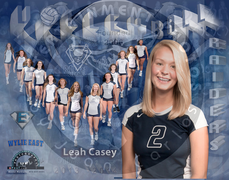 Leah Casey Poster 2013