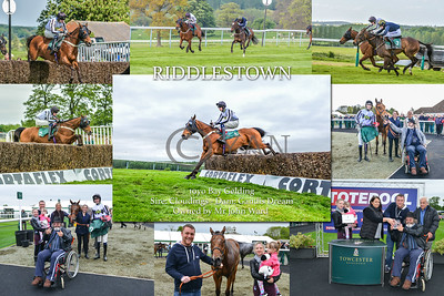 riddlestown_montage_new