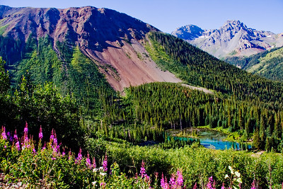 SJM108   San Juan Mountain Range, Colorado, mountains, San Juans, wildflowers, Black Bear Pass, jeep road