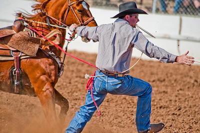 TUC5361   Tucson, Arizona, rodeo, horses,steers, calf roping, barrel racing, cowboys, cowgirls