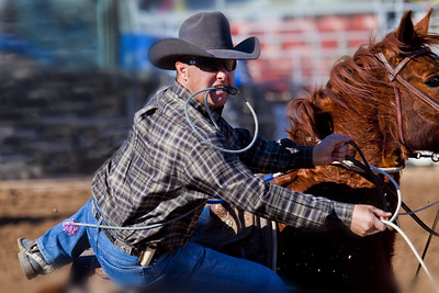 9027, Tucson, Arizona, rodeo, horses,steers, calf roping, barrel racing, cowboys, cowgirls