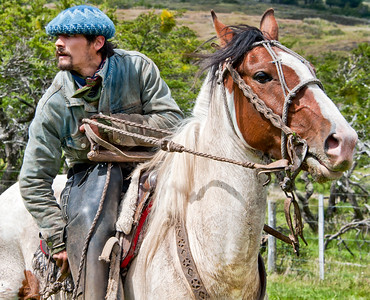 GA 129   gauchos, cowboys, chile, torres del paine, patagonia,cattle, horses,dogs, huasos, Cerro Guido, estancia, Patagonia Camp, Matetic Vineyards,