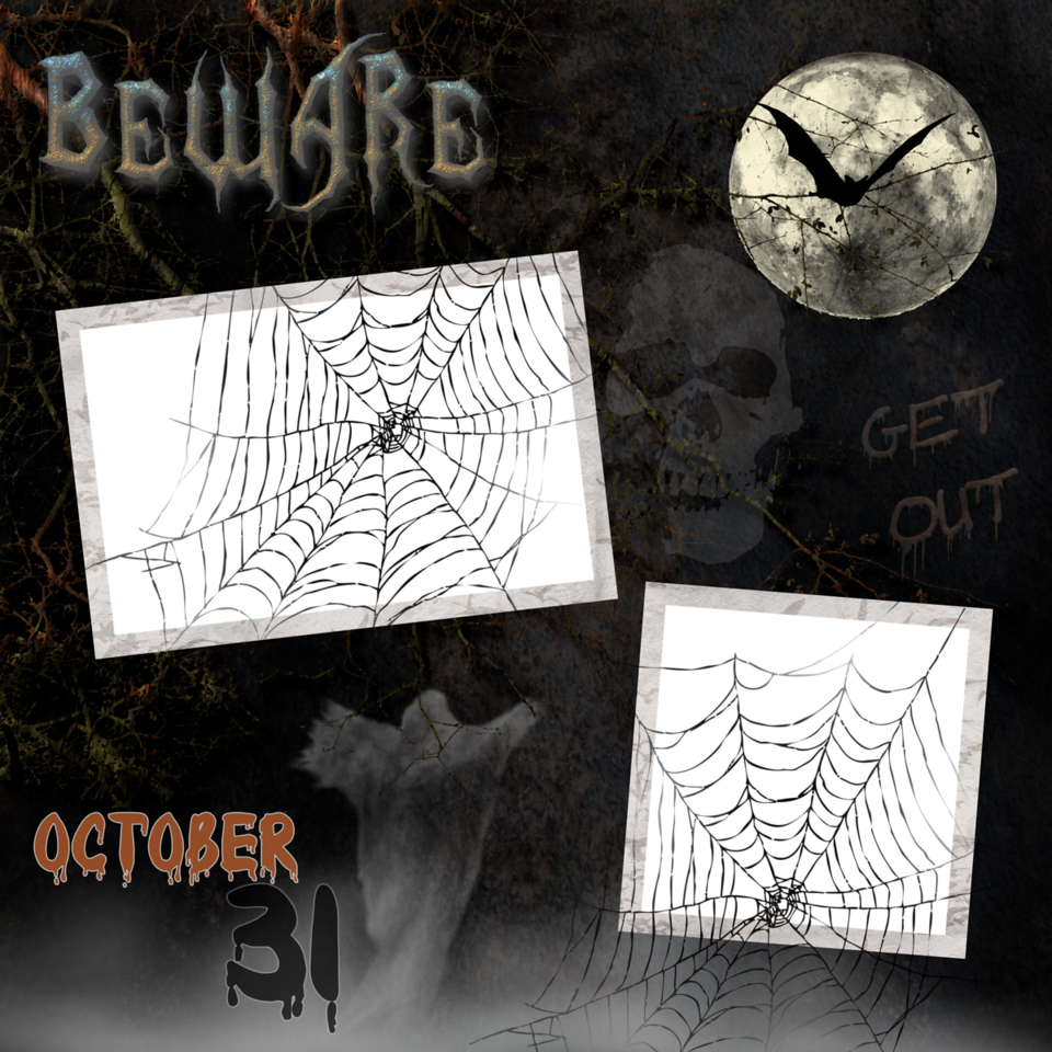 Beware<br /> .png file<br /> <br /> ***** Spider Webs will overlay on your photos ***** <br /> They are hard to see....please visit my etsy shop for a better preview.  Thank You!