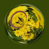 10/09:  Nashville, IN ornamental flower orb.  Original folder:  2009 10 04.