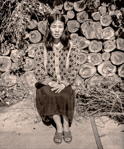 Sunjeon, Wood Pile