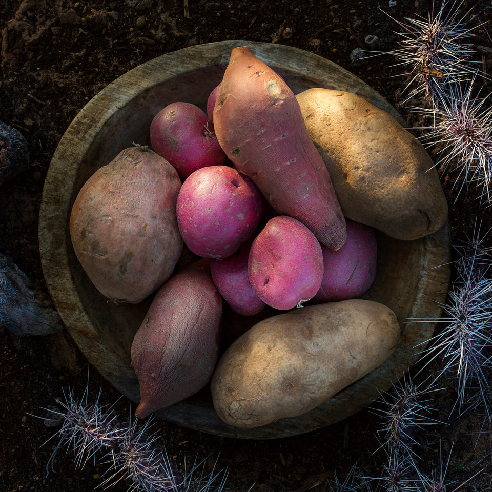 Potato, Red Potato, Yams and Sweet Potato