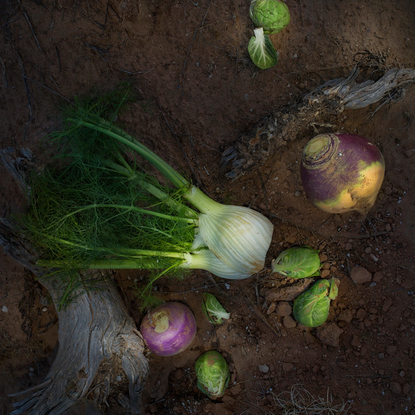 Chinese Cabbage, Brussel Sprouts, White Turnips & Rutabagas