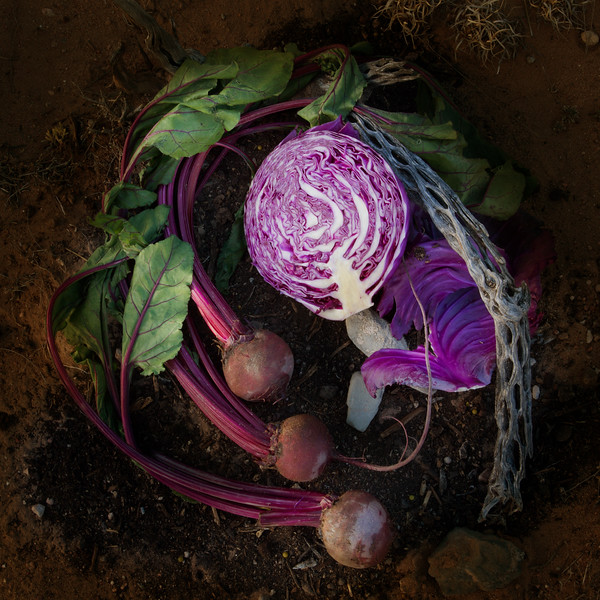 Beets and Cabbage,