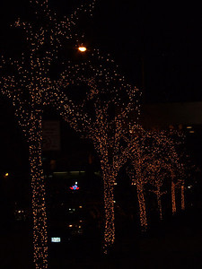 Some holiday tree lights2