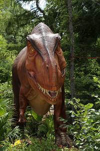 Dinos_-515