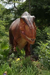 Dinos_-516