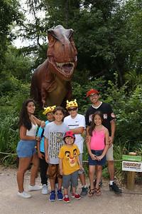 Dinos_-529