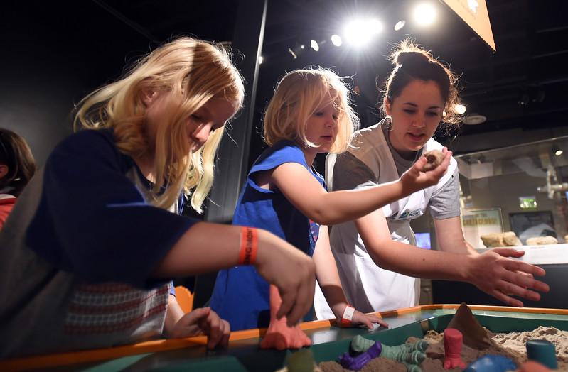 Longmont Museum Dinosaur Exhibit